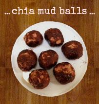 Paula's Chia Balls