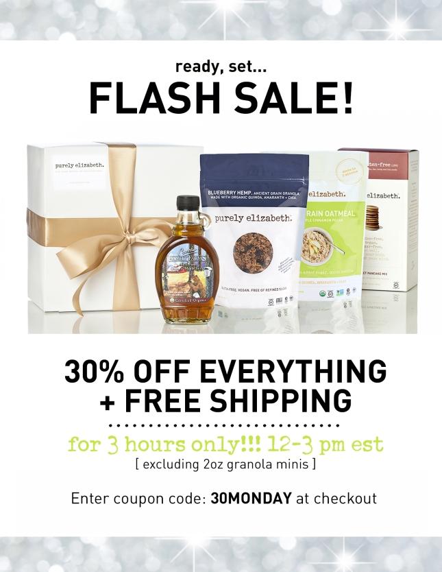 Cyber Monday Flash Sale