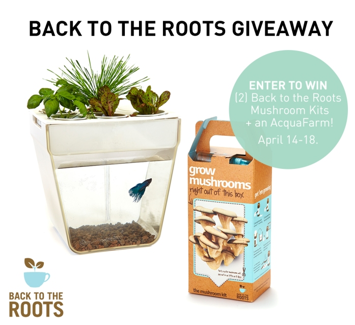Purely Spring Giveaway Back to the Roots Enter Now