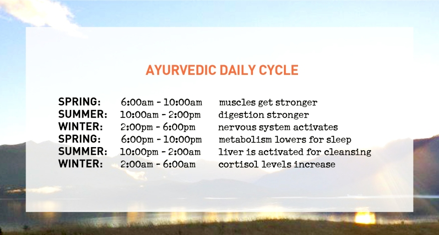 Ayurvedic Daily Cycle
